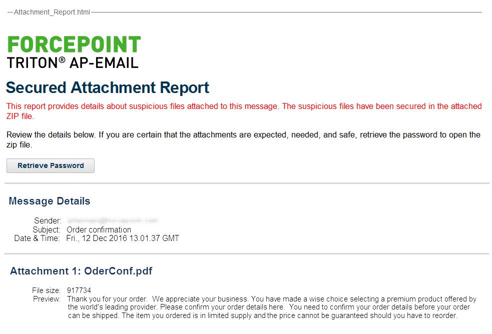 attachment report sample pdf